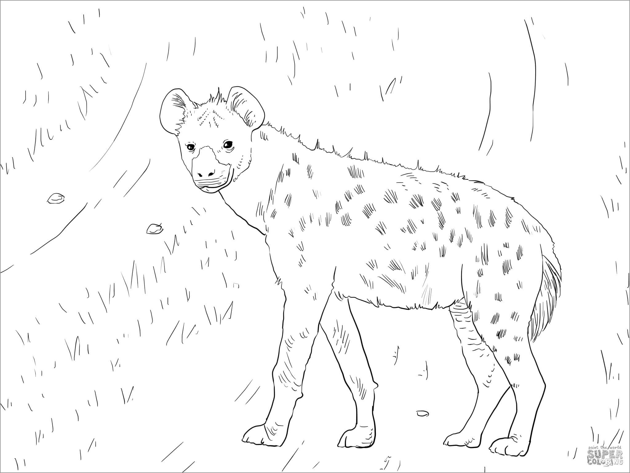 African Spotted Hyena Coloring Page