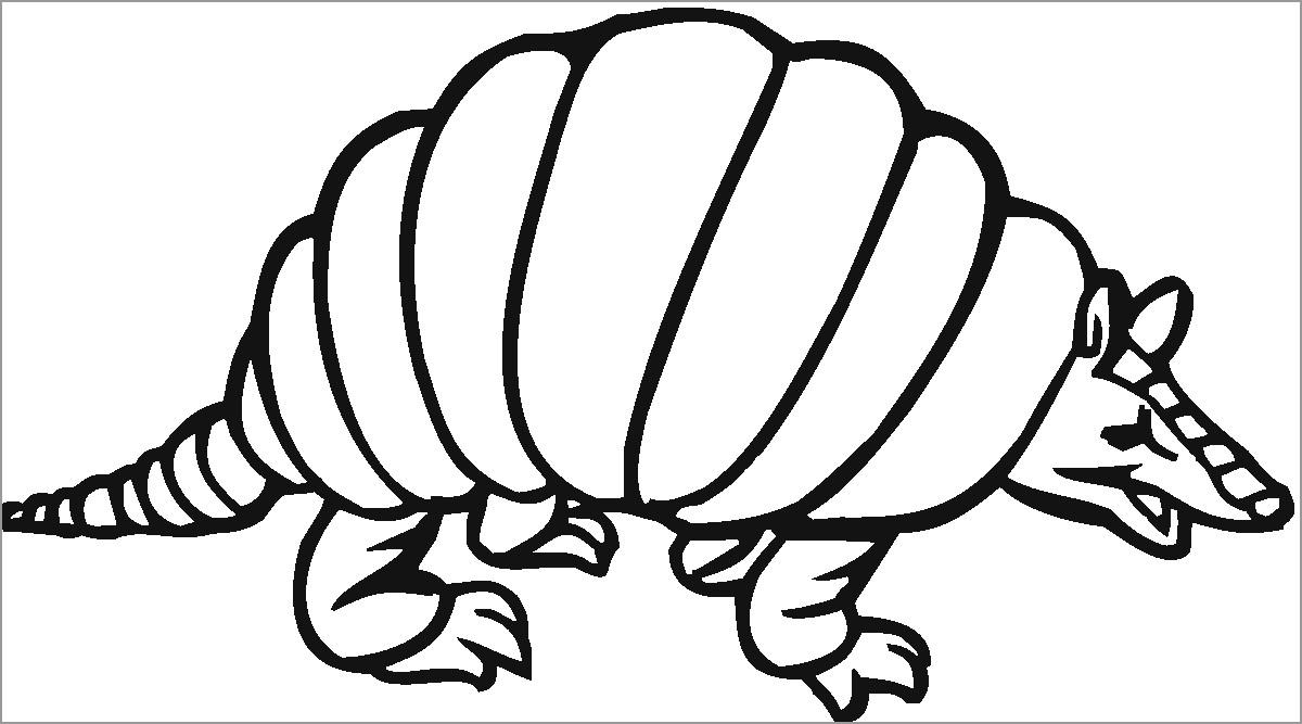 Armadillo Coloring Page for Kids