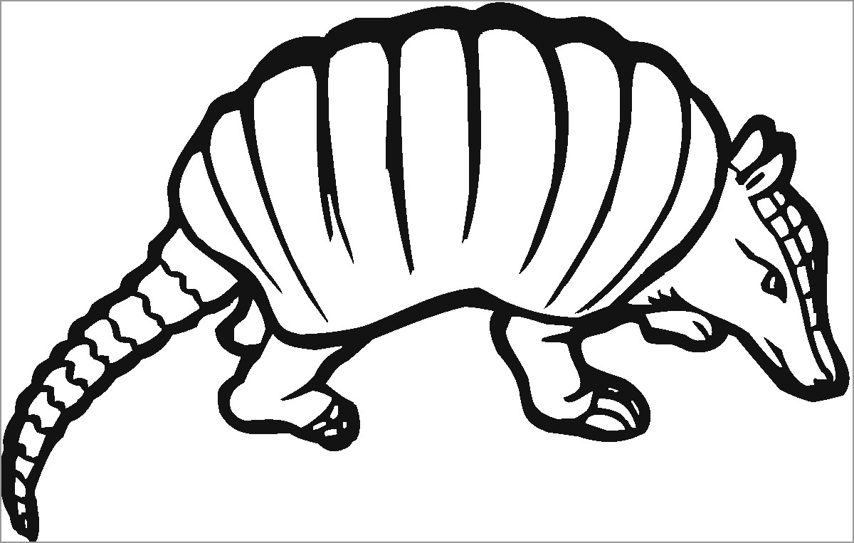 Armadillo Coloring Pages to Print