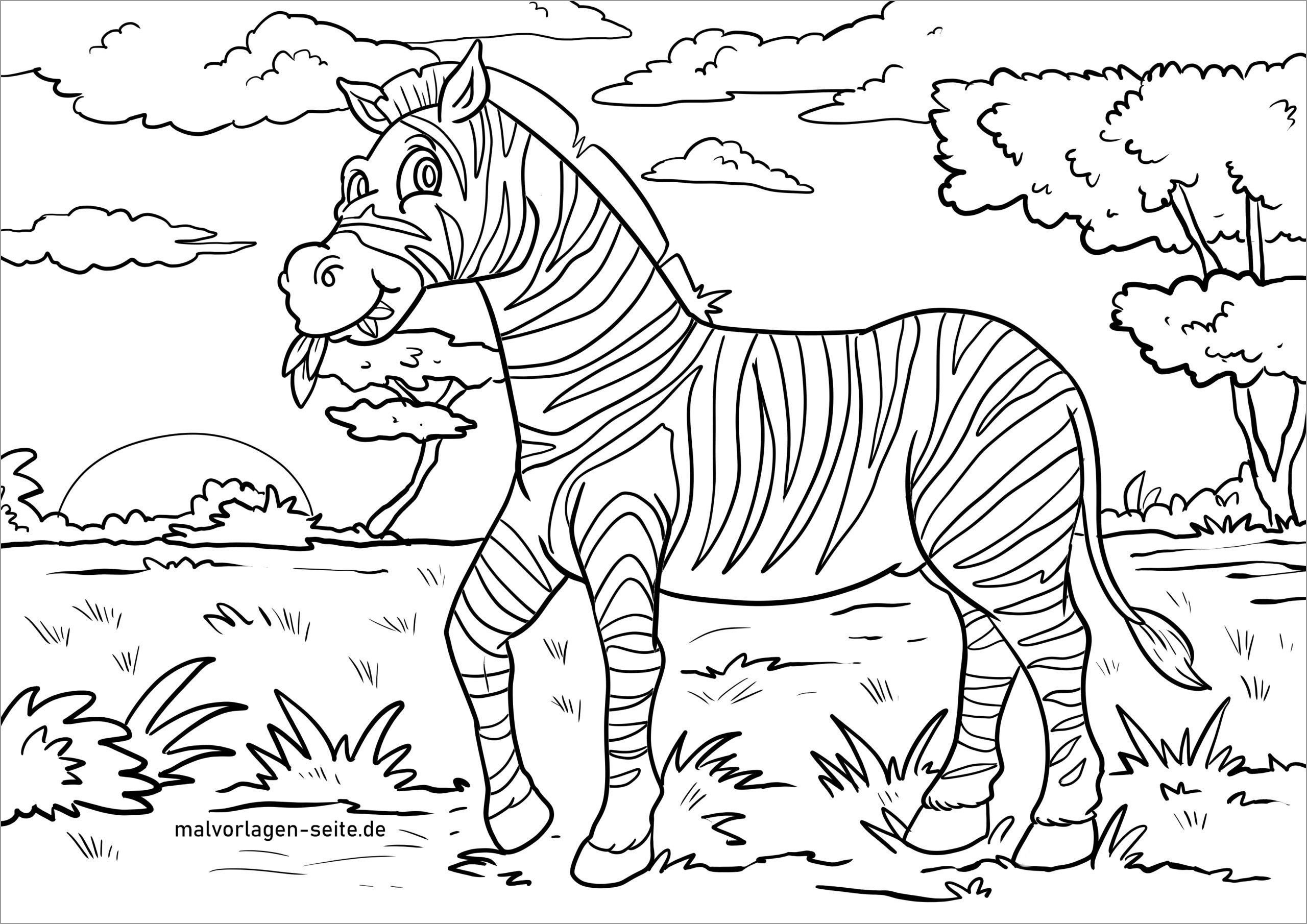 Ausmalbild Zebra Coloring Page
