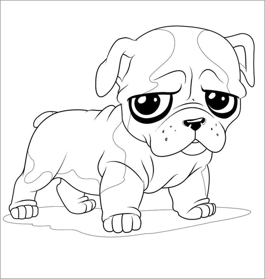 Baby Bulldog Coloring Page