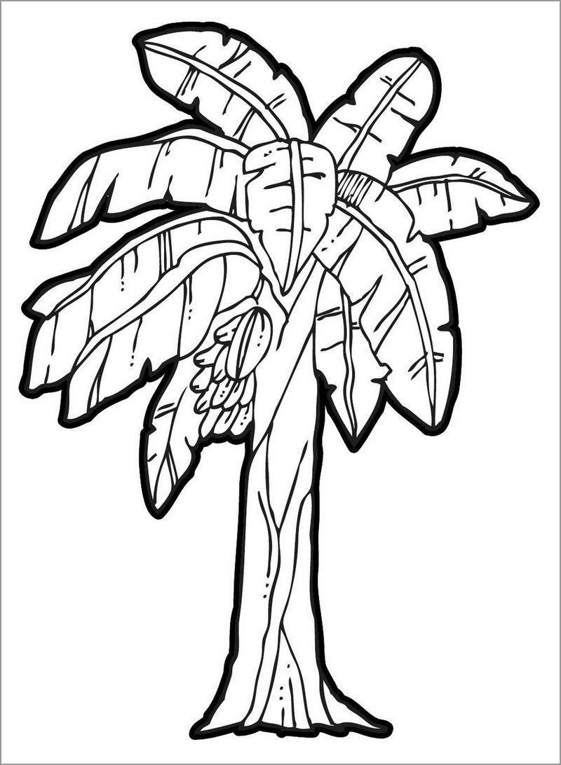 Banana Plant Coloring Page
