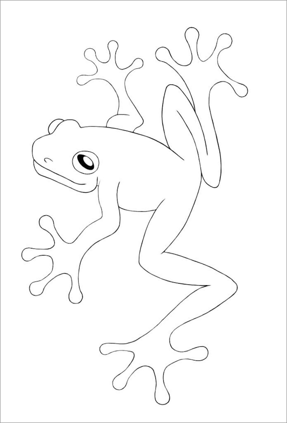 Cane toad Coloring Page