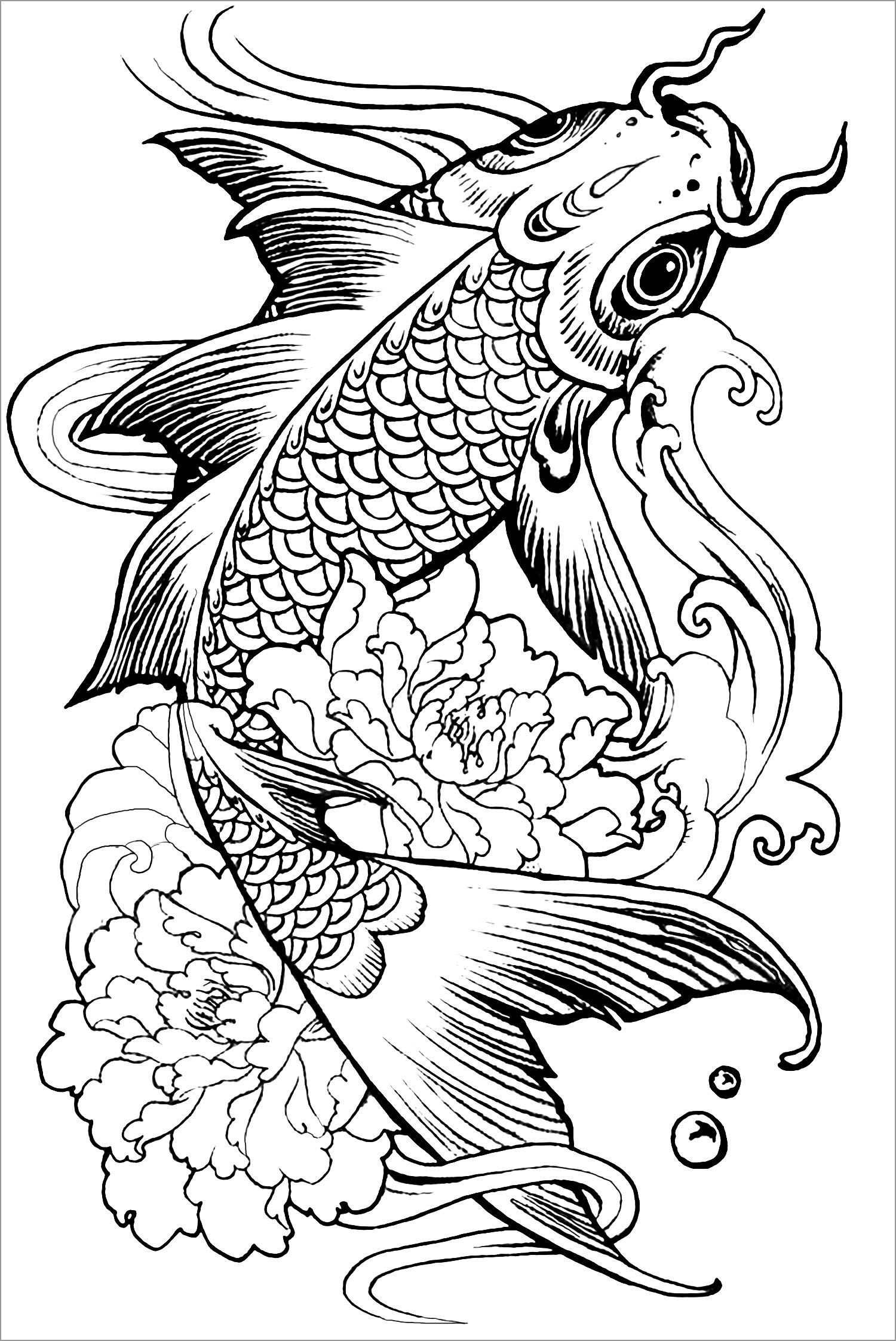 Carp Coloring Page for Adults