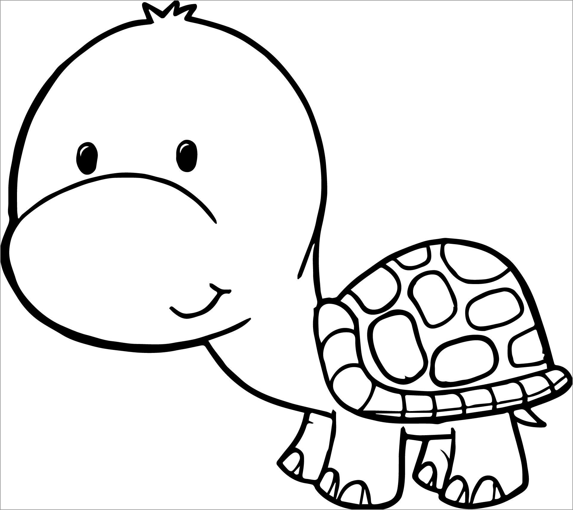 Cartoon Turtle Coloring Page