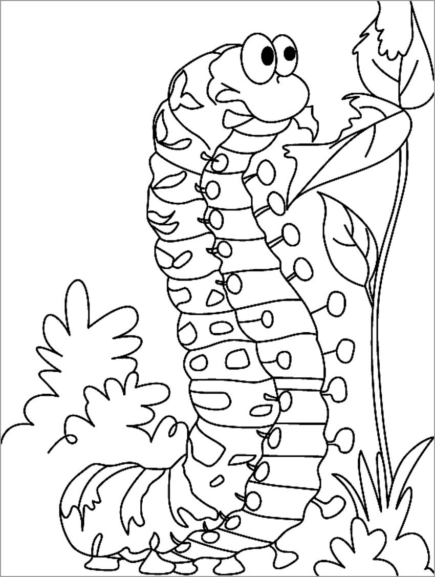 Coloring Page Of A Caterpillar