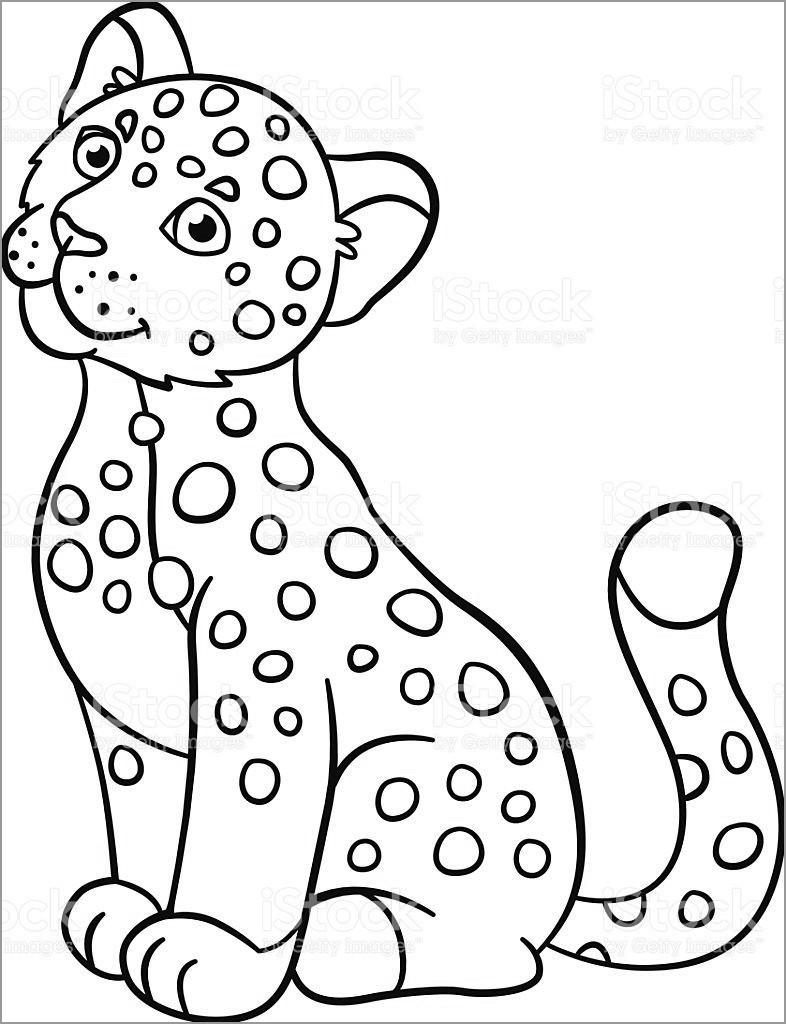 Cute Baby Jaguar Coloring Pages
