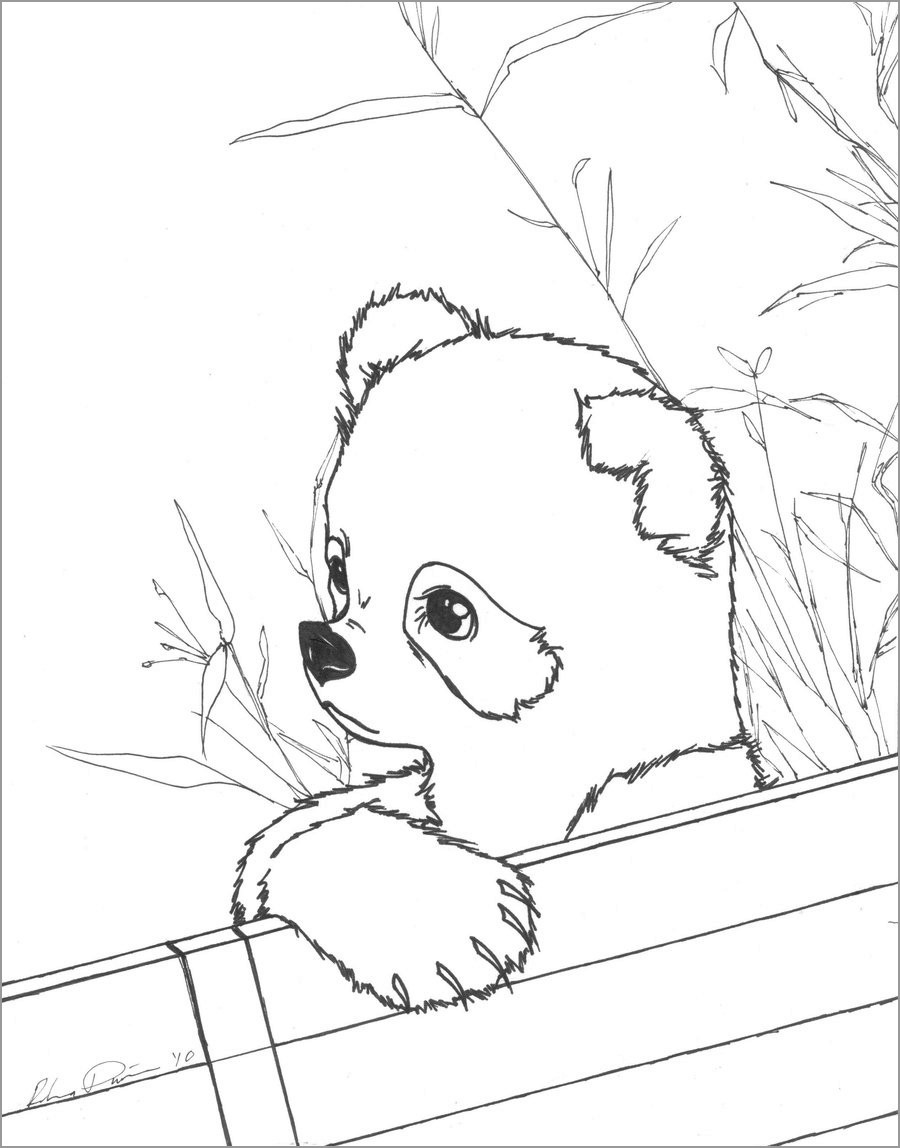 Cute Baby Panda Coloring Page