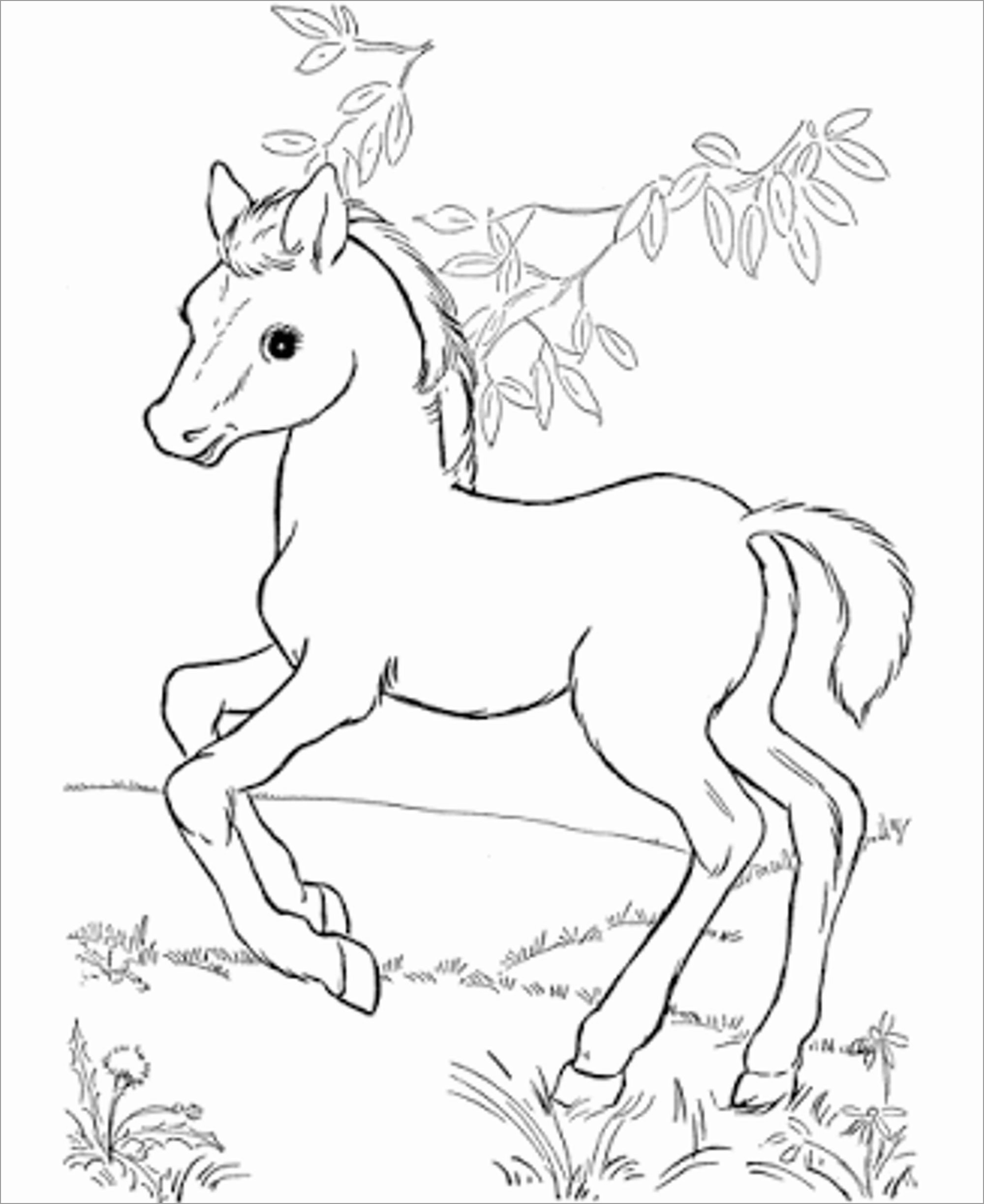 Cute Horse Coloring Page