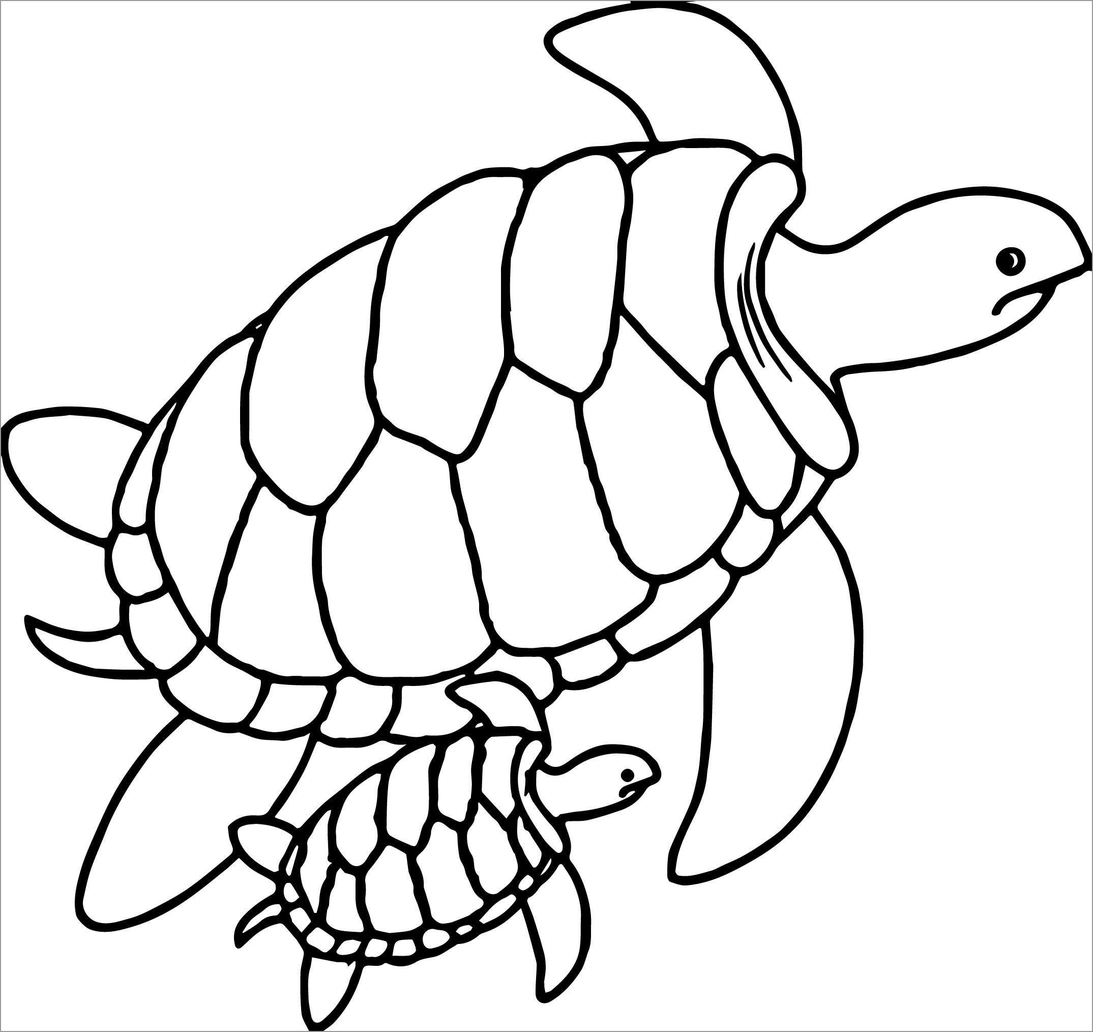 Cute Sea Turtle Coloring Page for Preschool