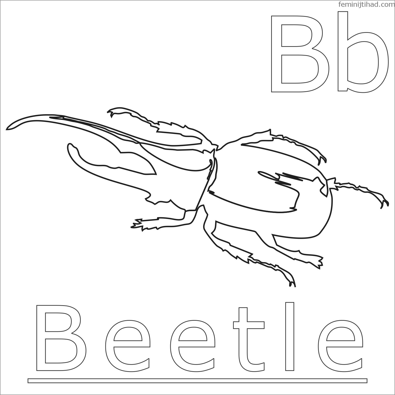 Darkling Beetle Coloring Page