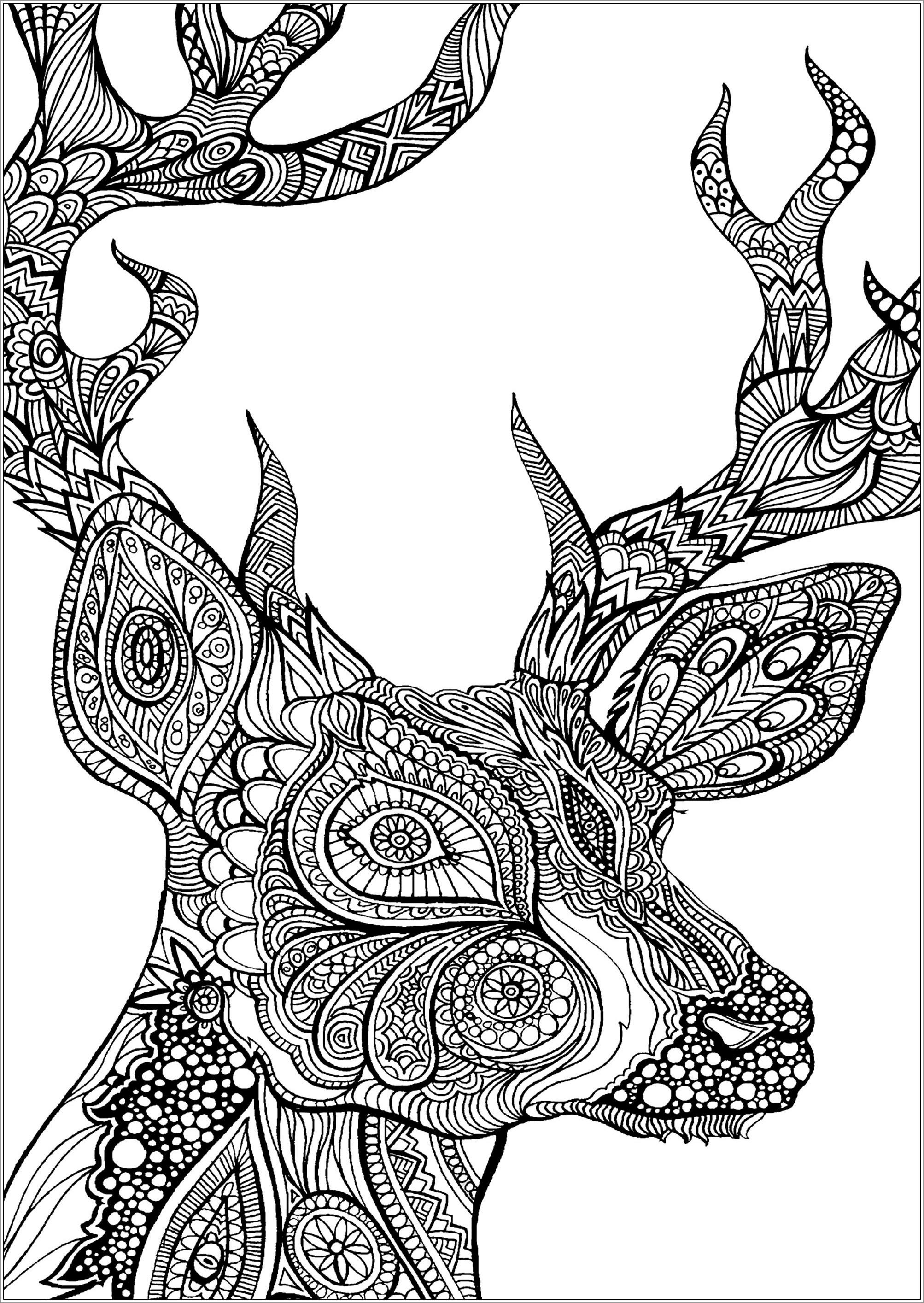 Deer Head Mandala Adult Coloring Page