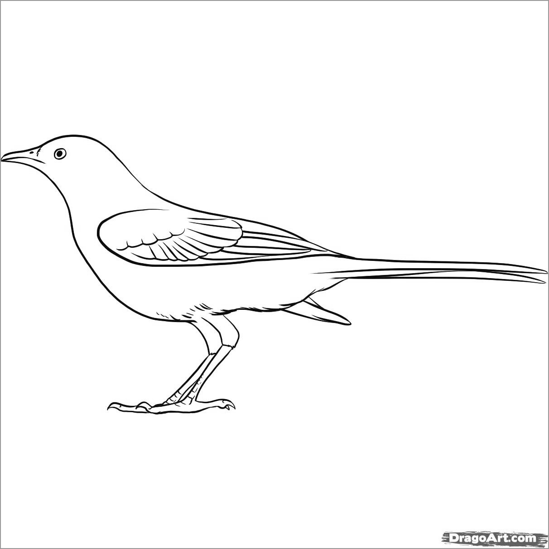 Easy Mockingbird Coloring Page