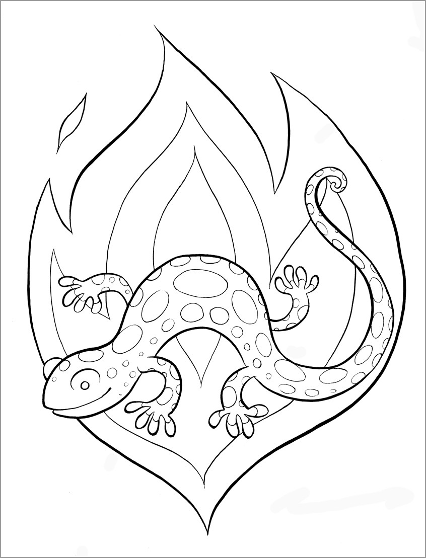 Easy Salamander Coloring Page for Kids