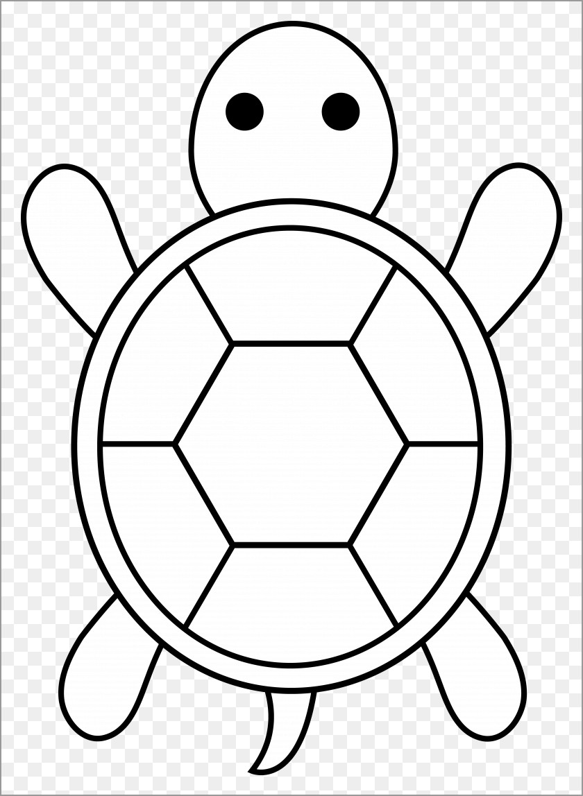 Easy Sea Turtle Coloring Pages for Kids
