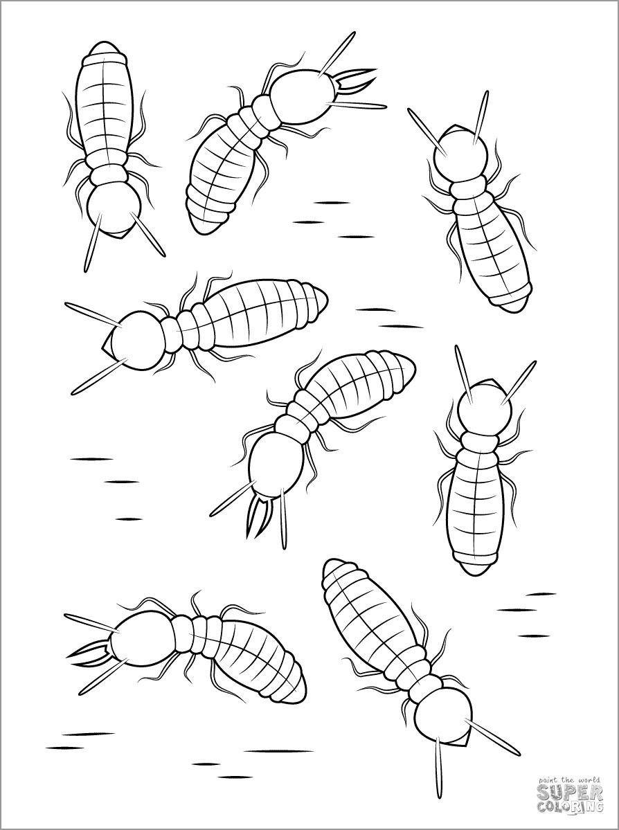 Formosan Subterranean Termites Coloring Page