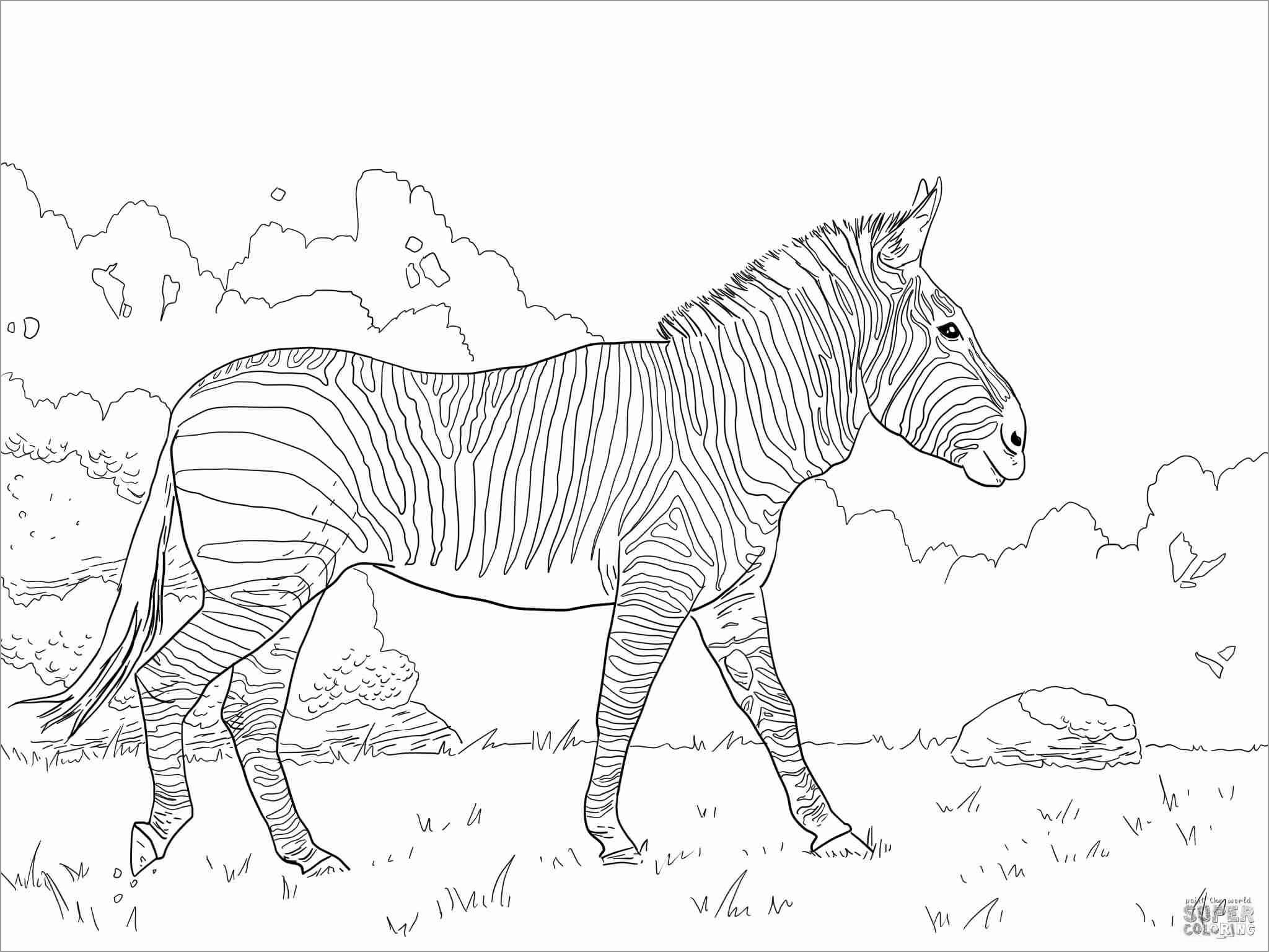 Fresh Horse In Barn Coloring Pages – Fym