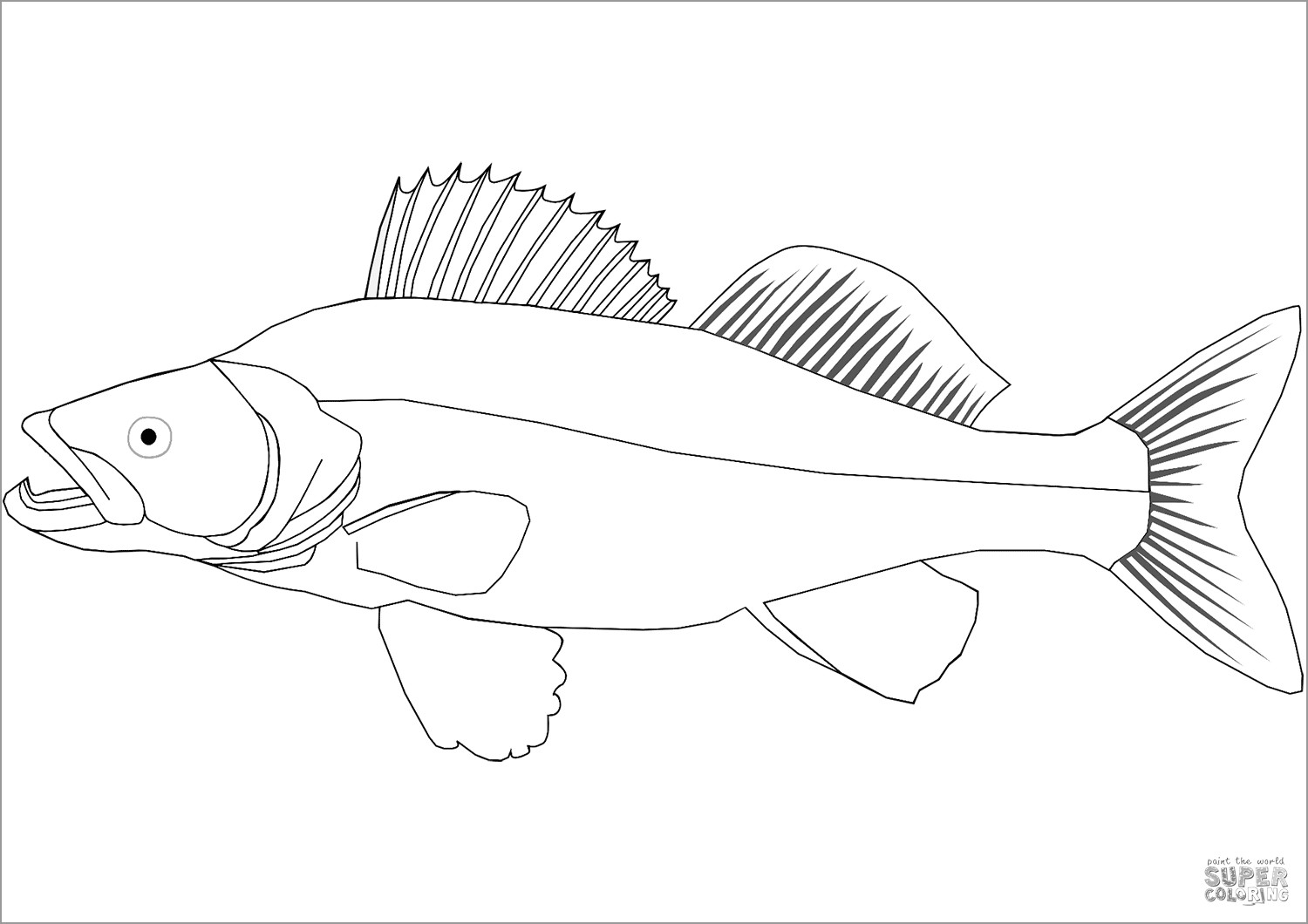 Golden Perch Coloring Pages