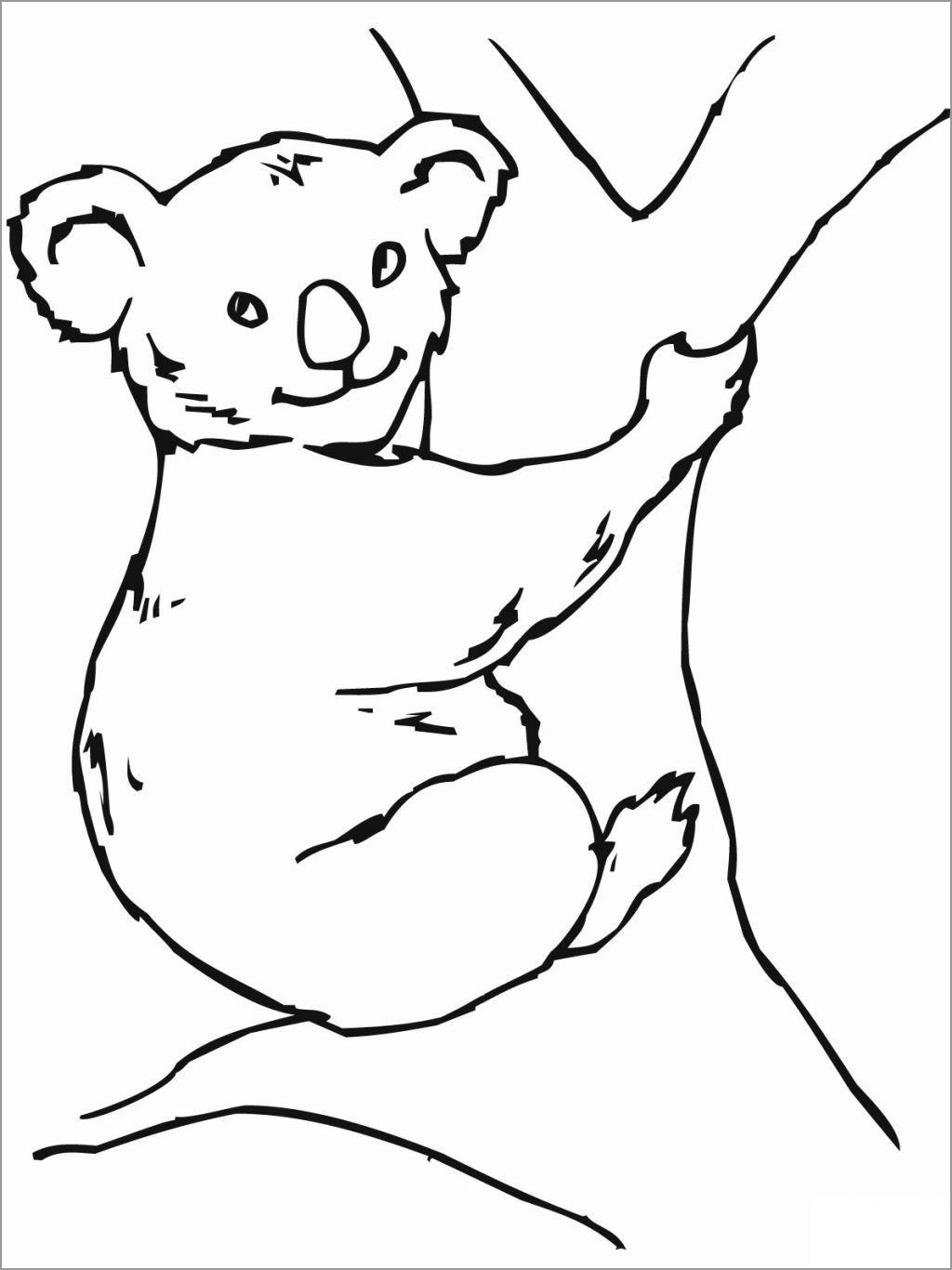 Koala Bear Coloring Page Free