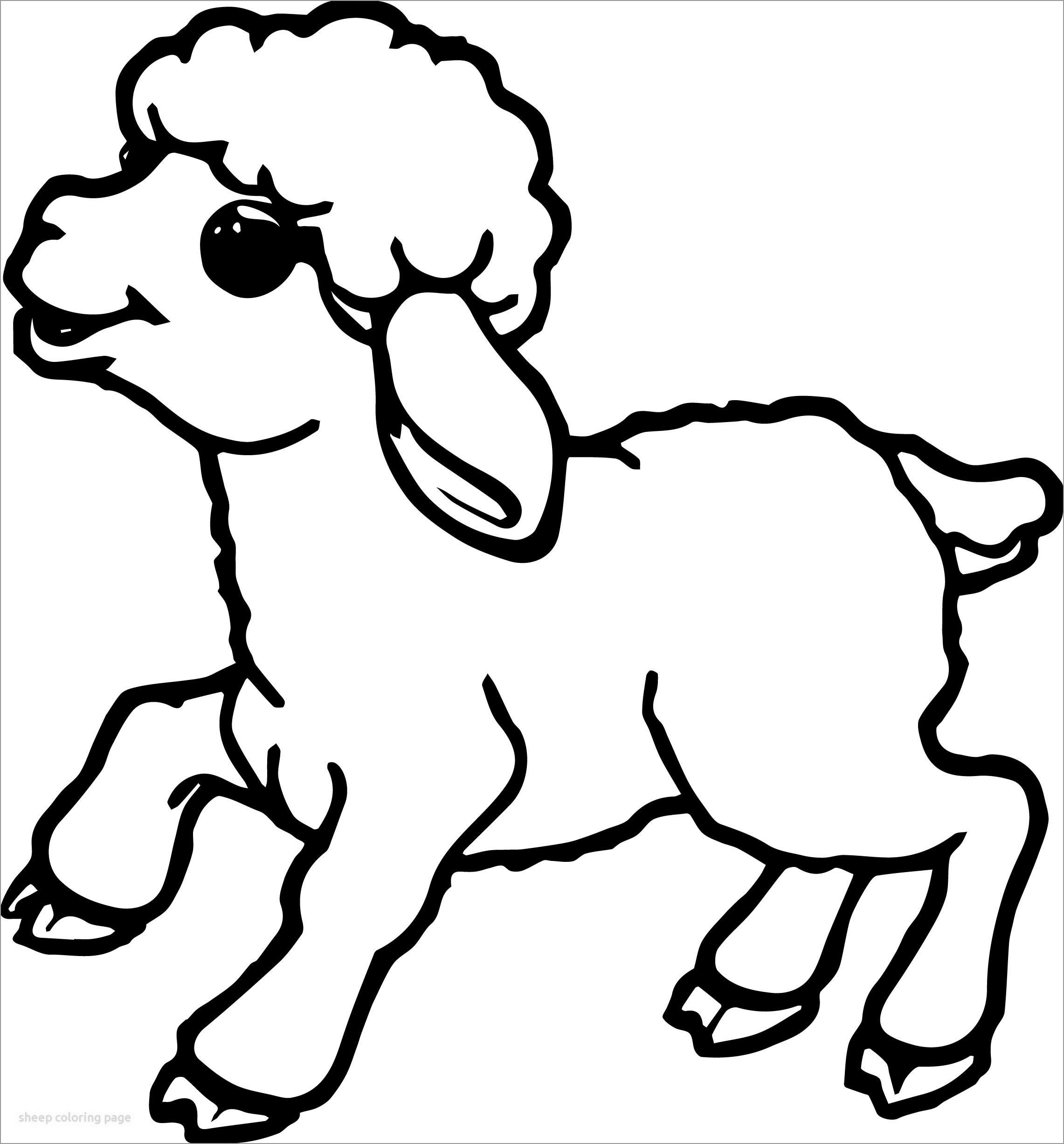Lamb Baby Coloring Page