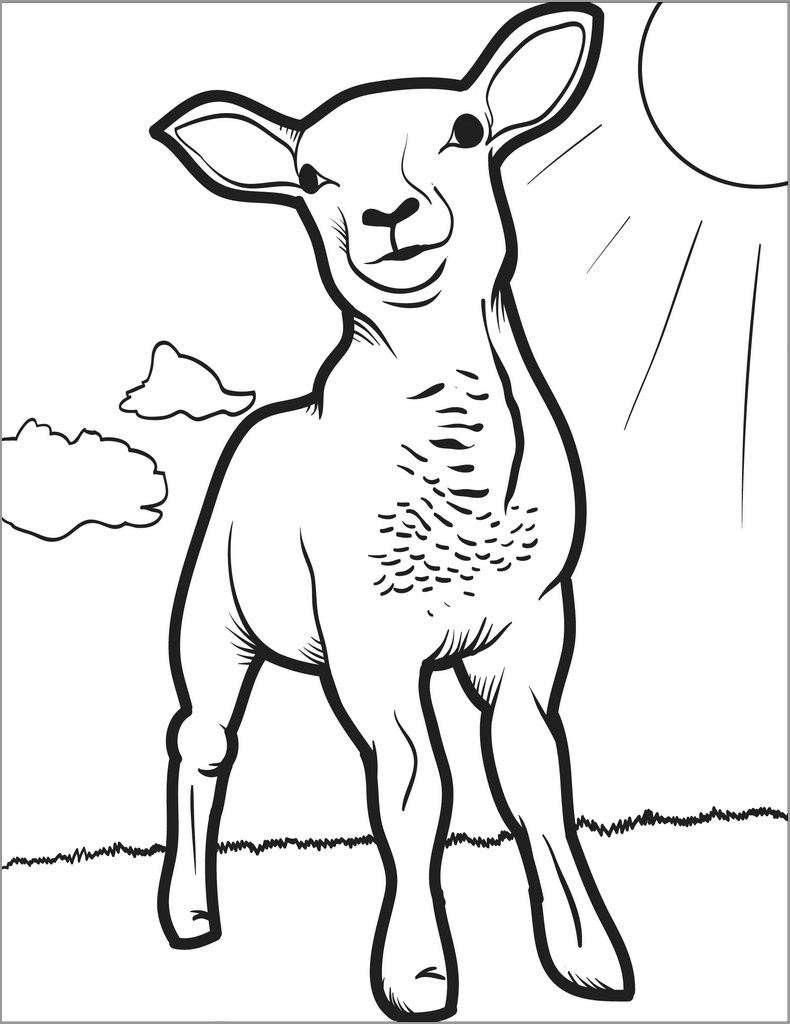 Lamb Coloring Page Free