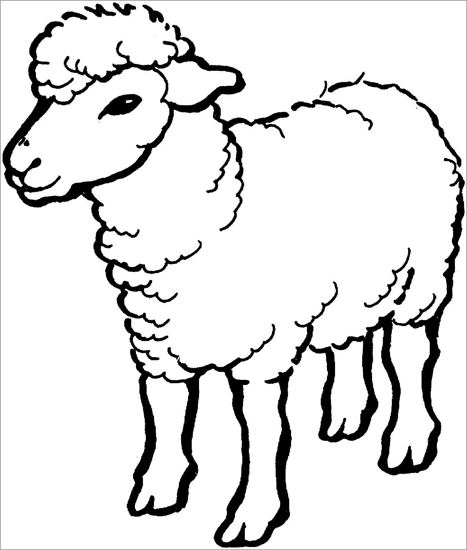 Lamb Coloring Page Preschoolers