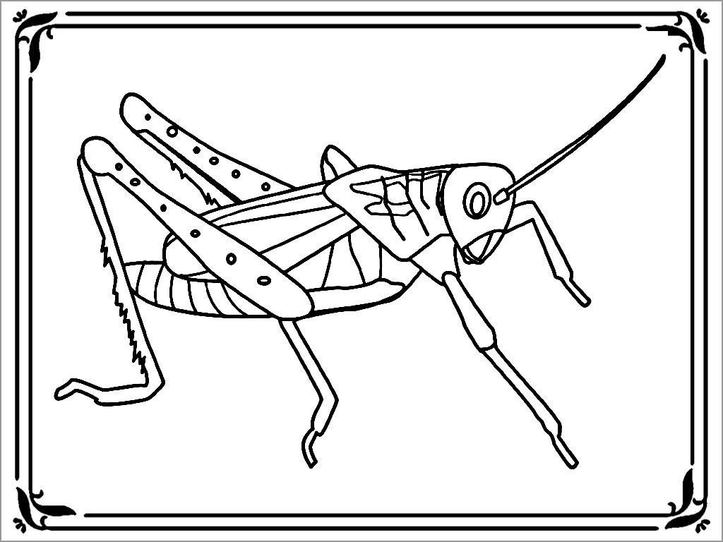 Locust Plague Coloring Page