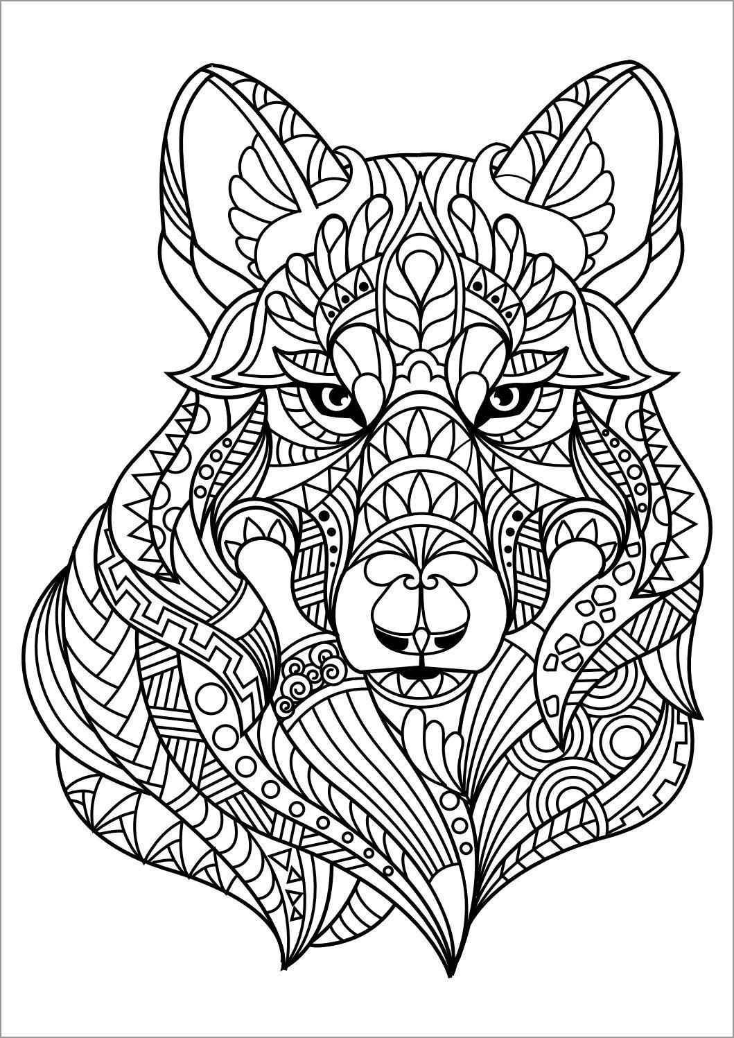 Mandala Lynx Head Coloring Page
