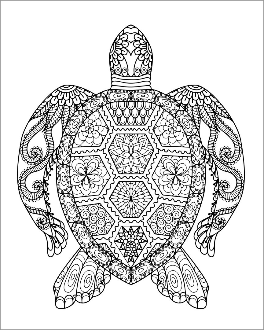 Mandala Turtle Coloring Pages for Adults