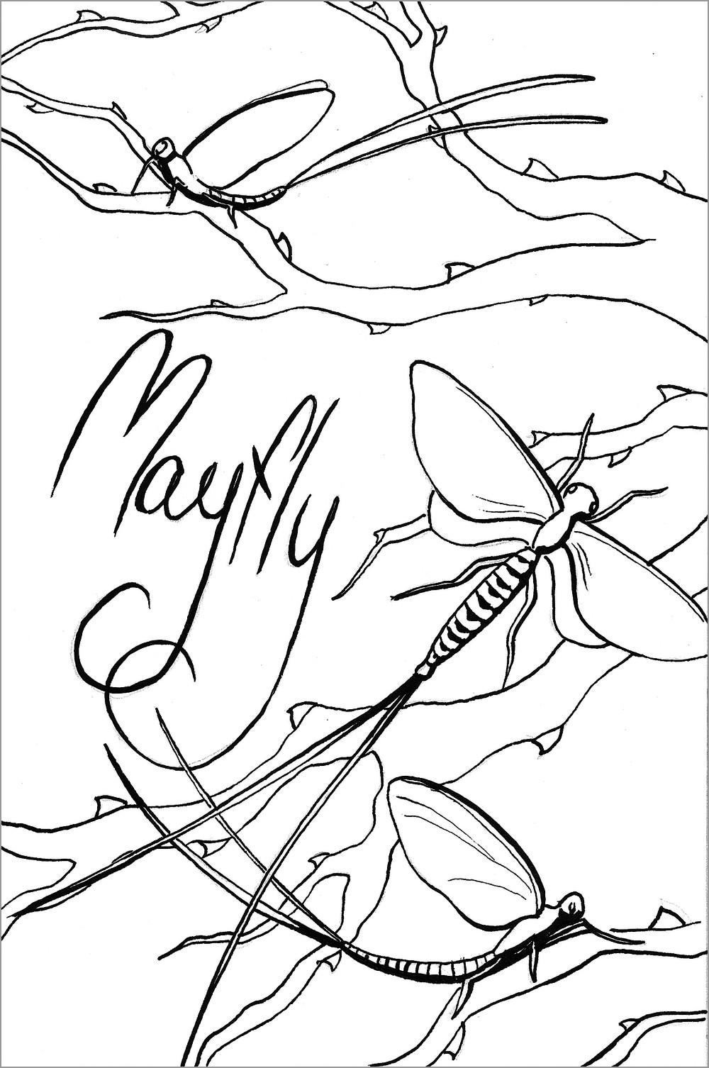 Mayfly Coloring Page to Print