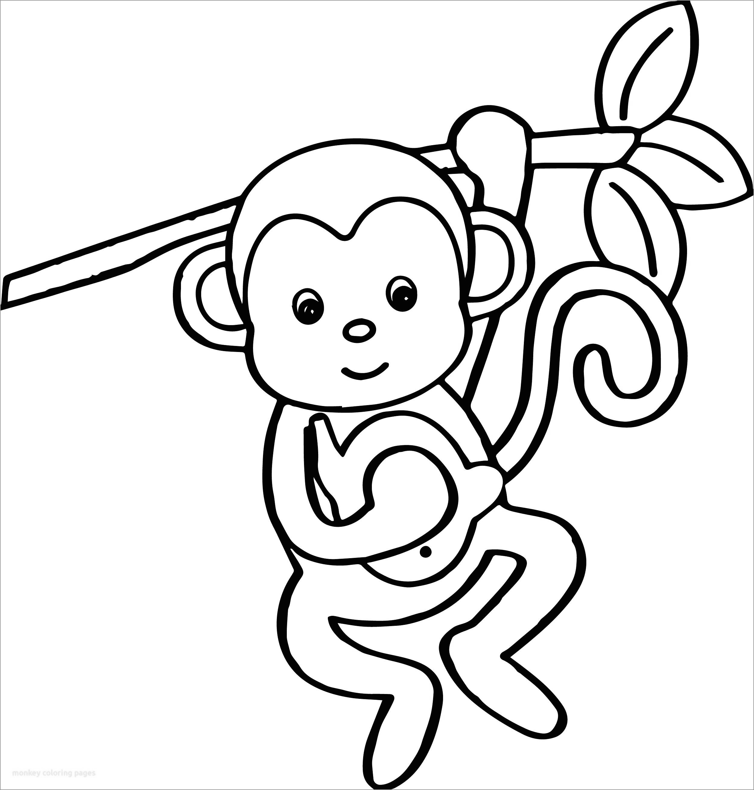 Monkey In A Tree Coloring Page - ColoringBay