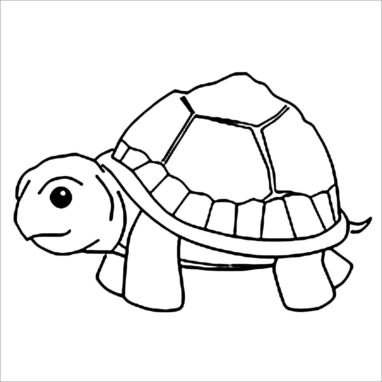 Picture Of A Turtle Coloring Page