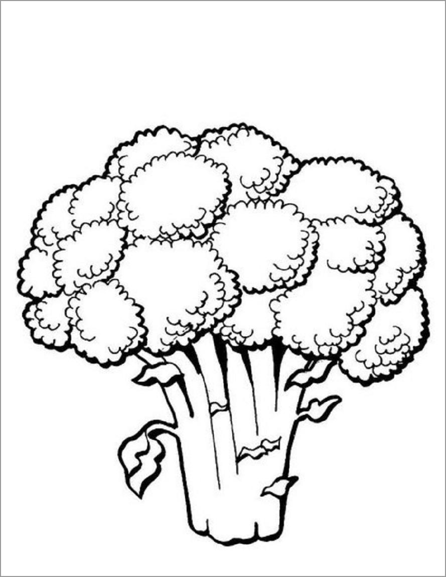 Printable Broccoli Coloring Page