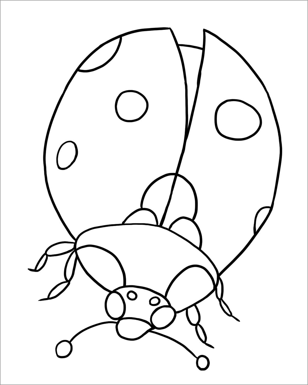 Printable Ladybug Coloring Page