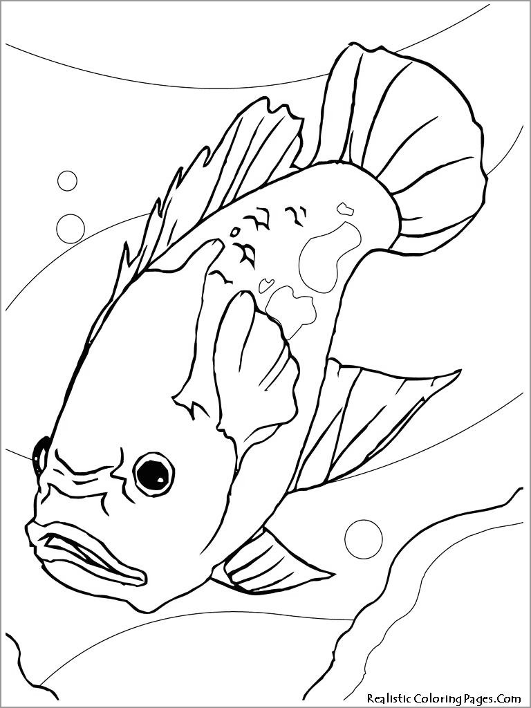 Printable Perch Coloring Page