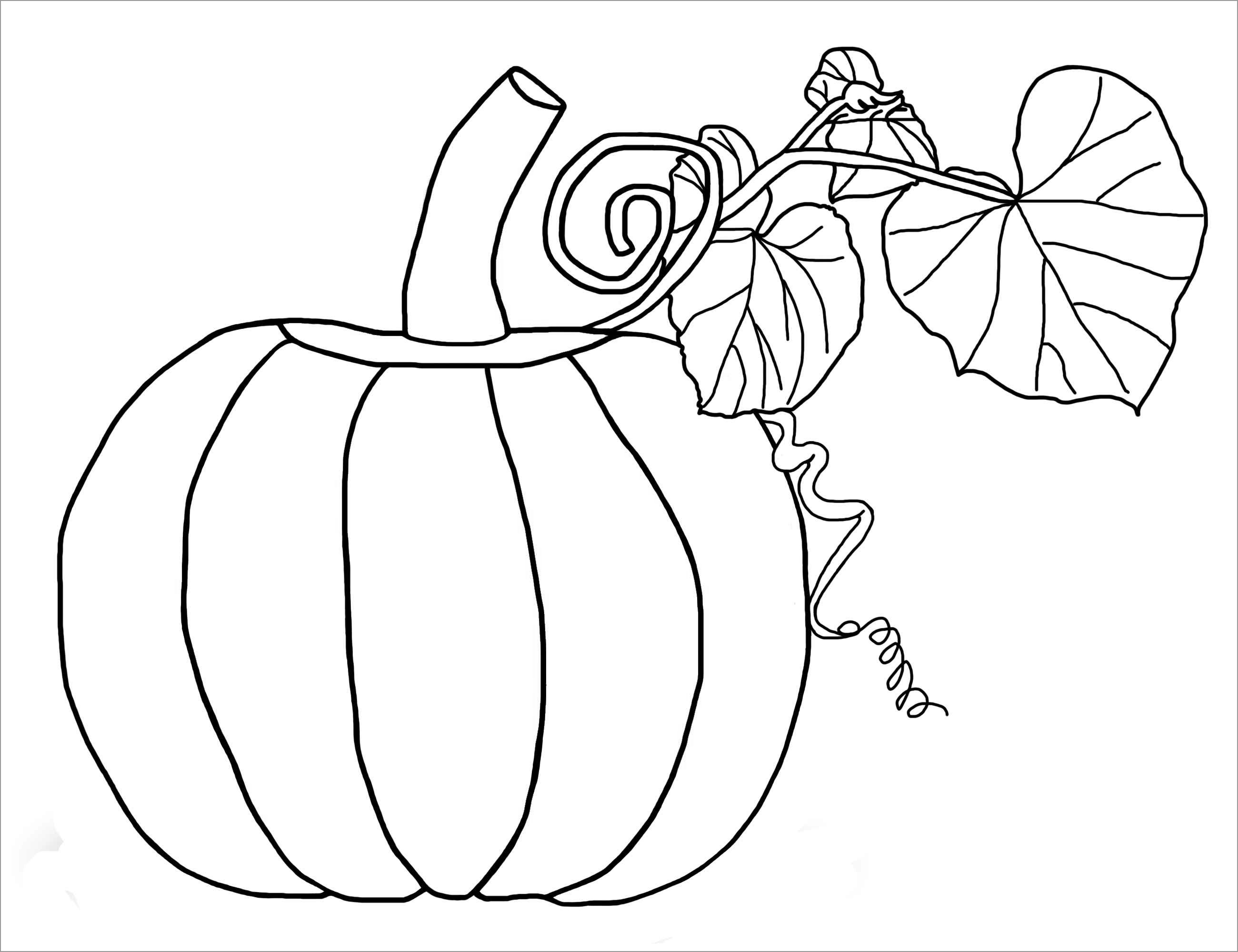 Printable Pumpkins Coloring Pages for Kids