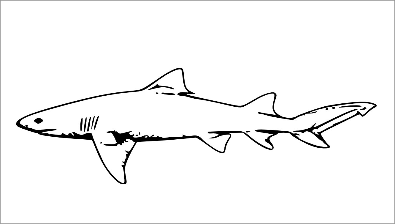 Printable Realistic Shark Coloring Pages for Kids