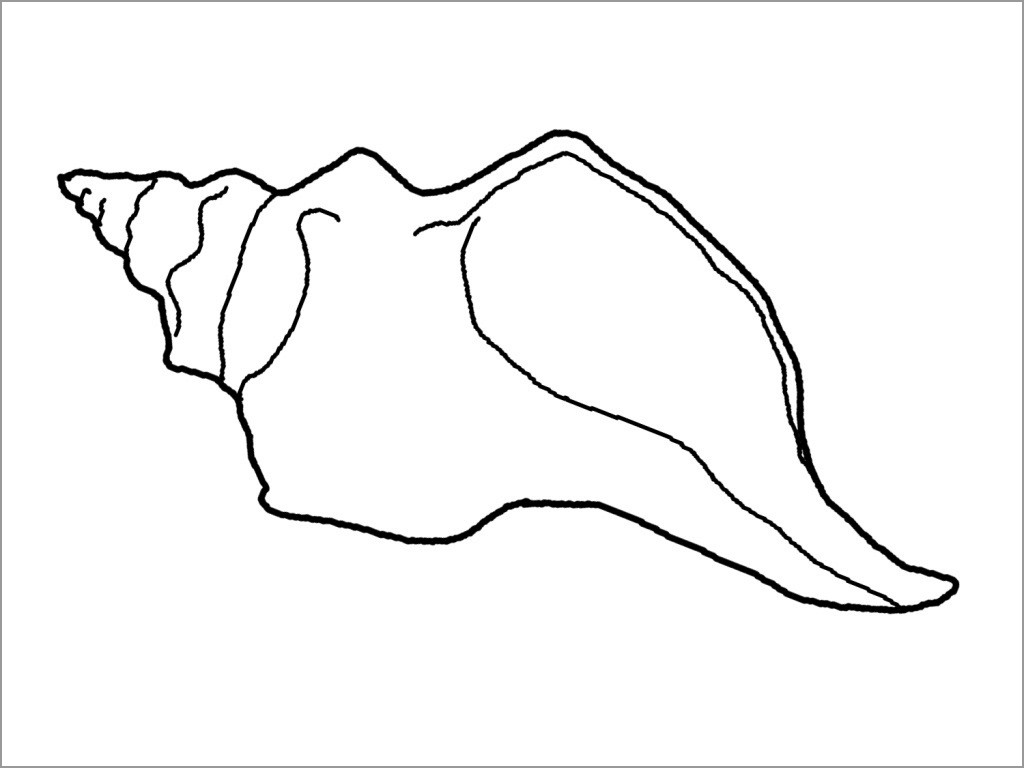 Printable Shell Coloring Page for Kids