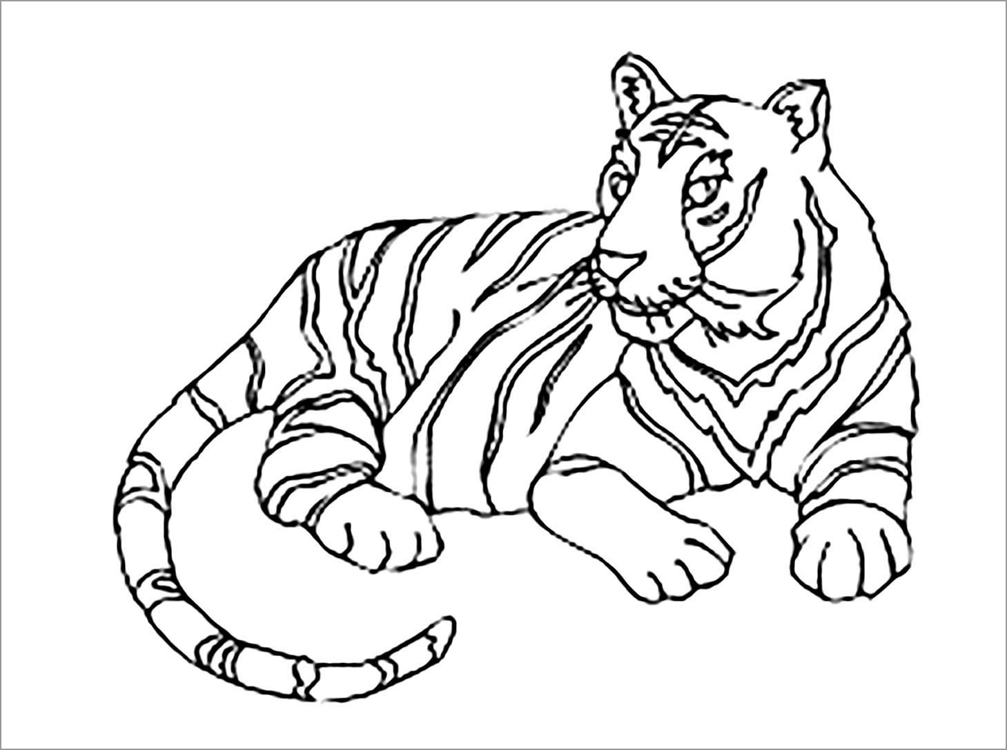 Printable Tiger Coloring Page