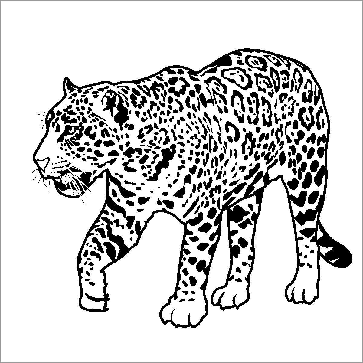 Realistic Jaguar Coloring Page