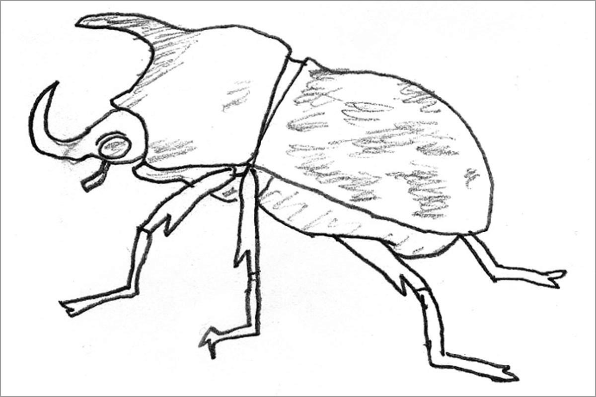 Rhino Beetle Coloring Page