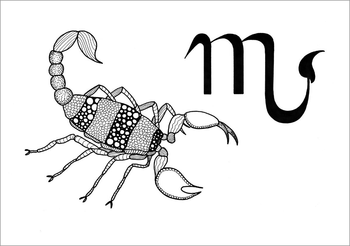 Scorpio and Zodiac Sign Coloring Page for Adult
