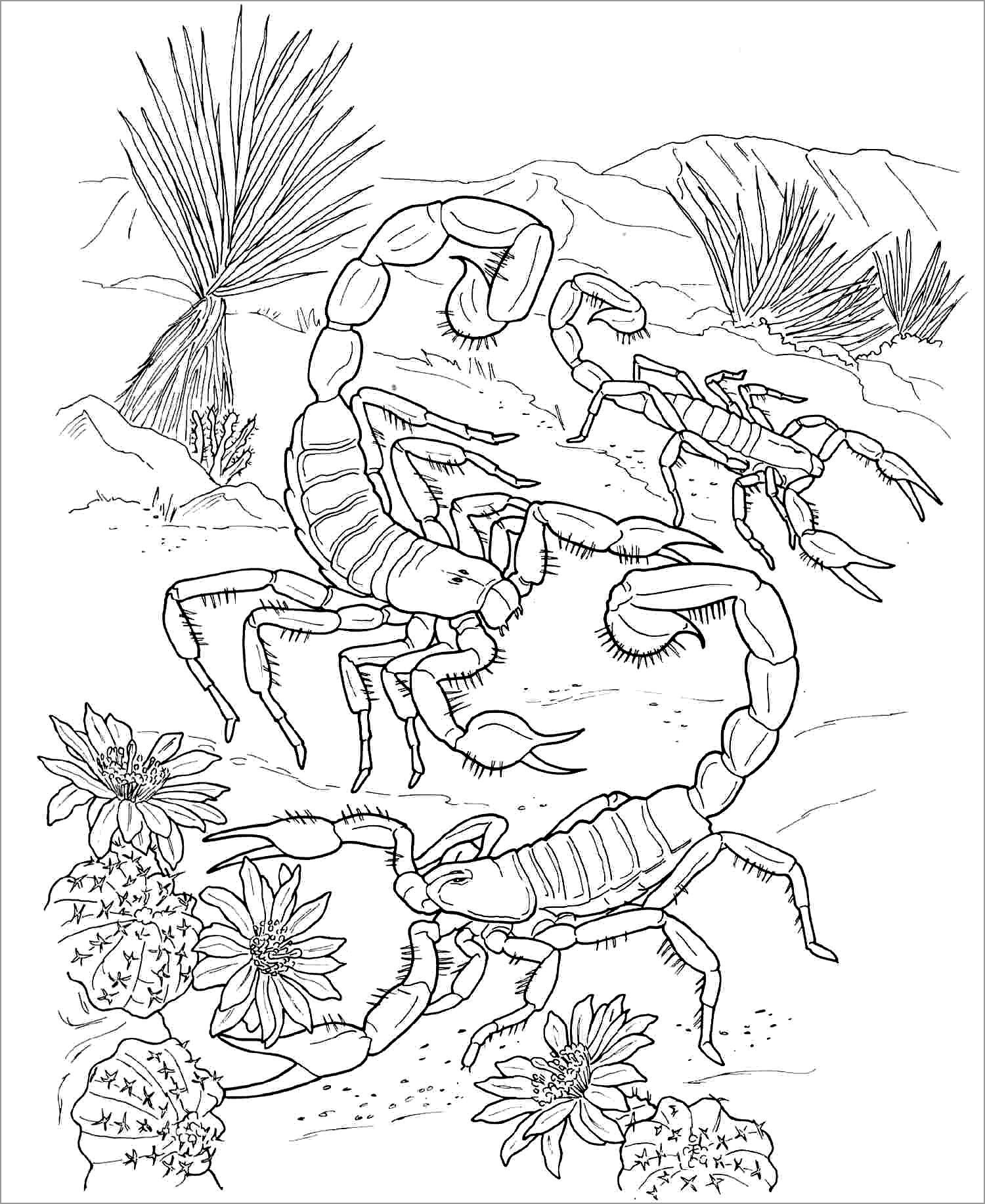 Scorpio Coloring Pages for Adult