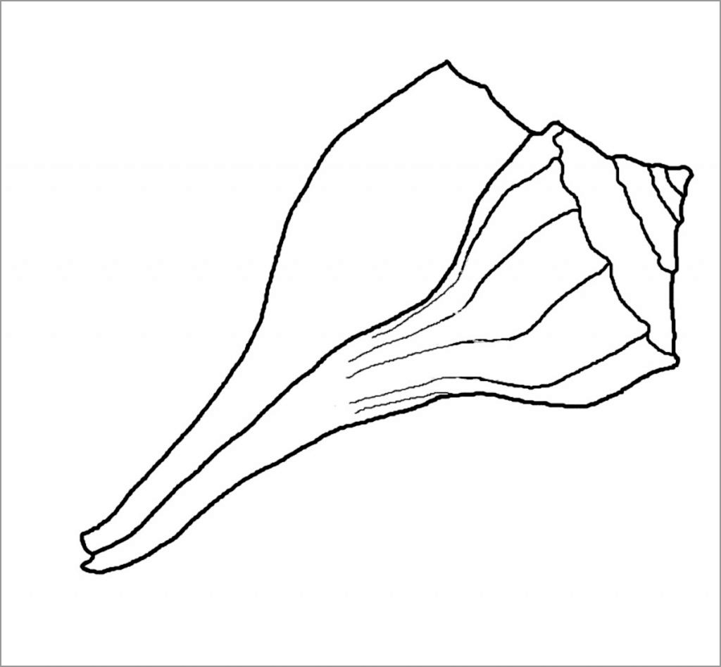 Seashell Coloring Page for Kindergarten