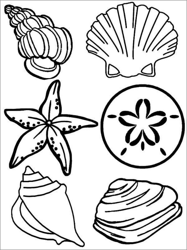 Shells Coloring Page to Print