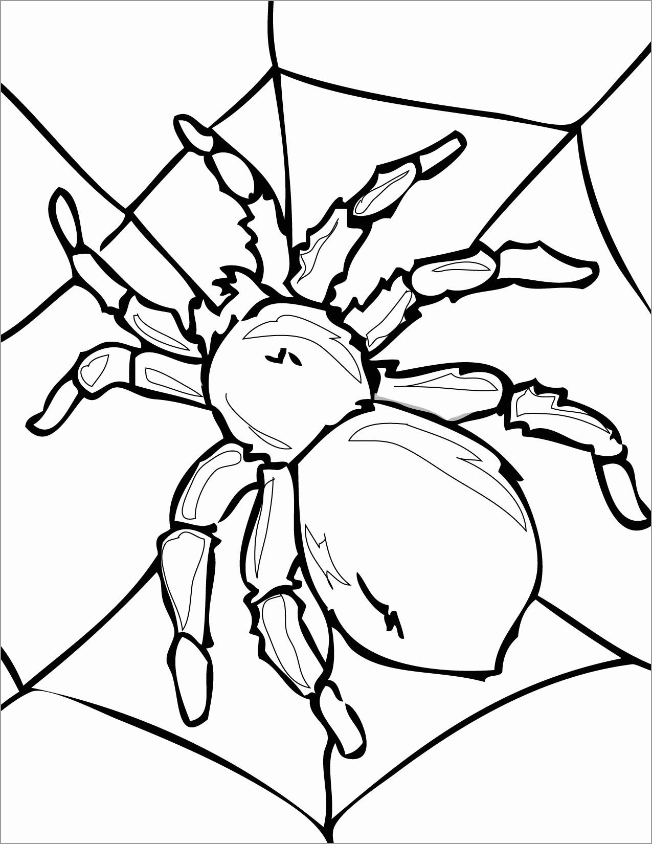 Tarantula Coloring Page to Print