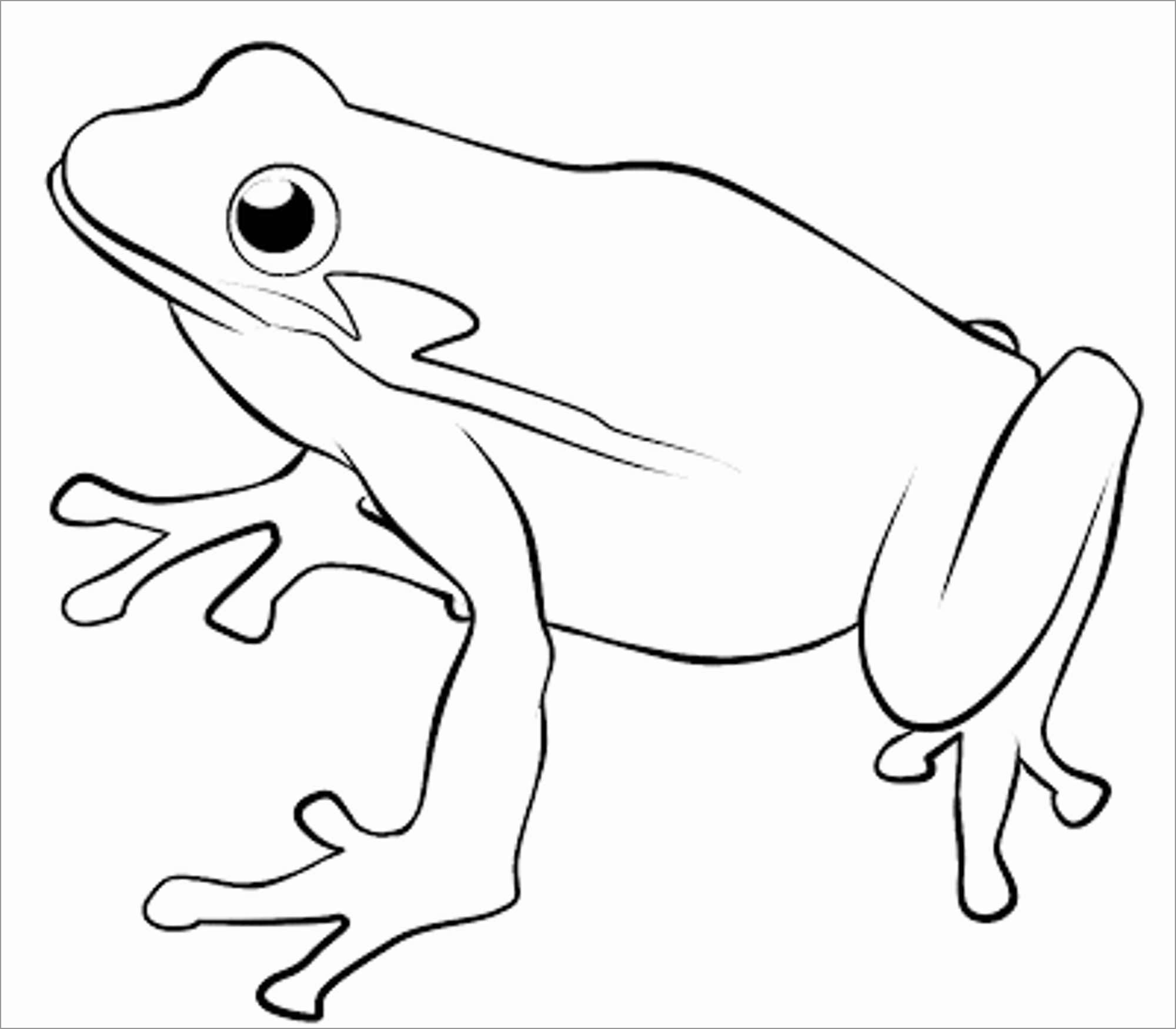 Toad Coloring Page to Print