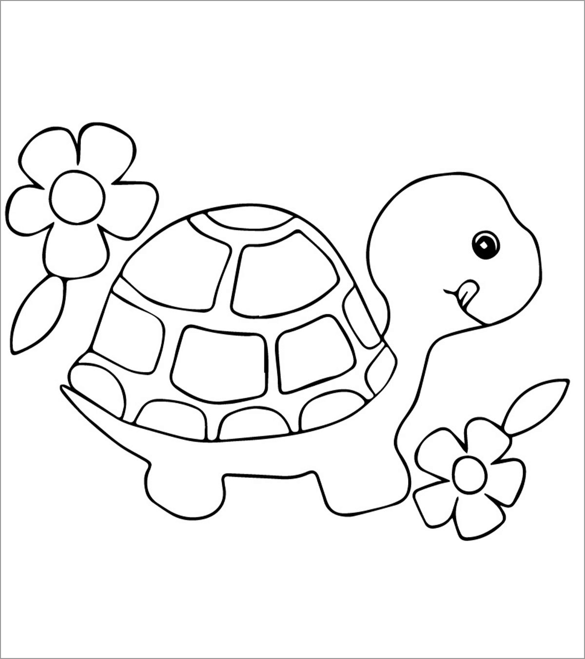 Turtle Coloring Pages for Kindergarten