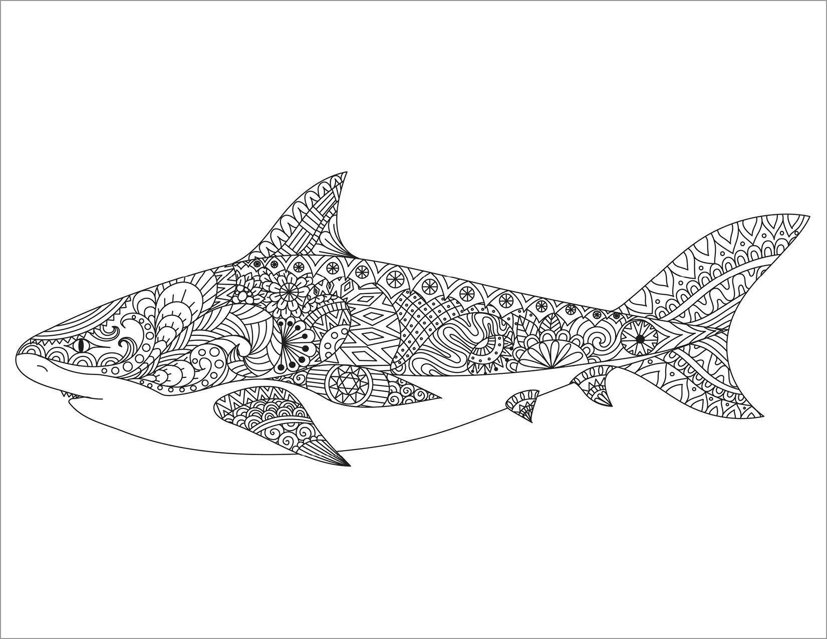 Zentangle Mandala Shark Coloring Page for Adult