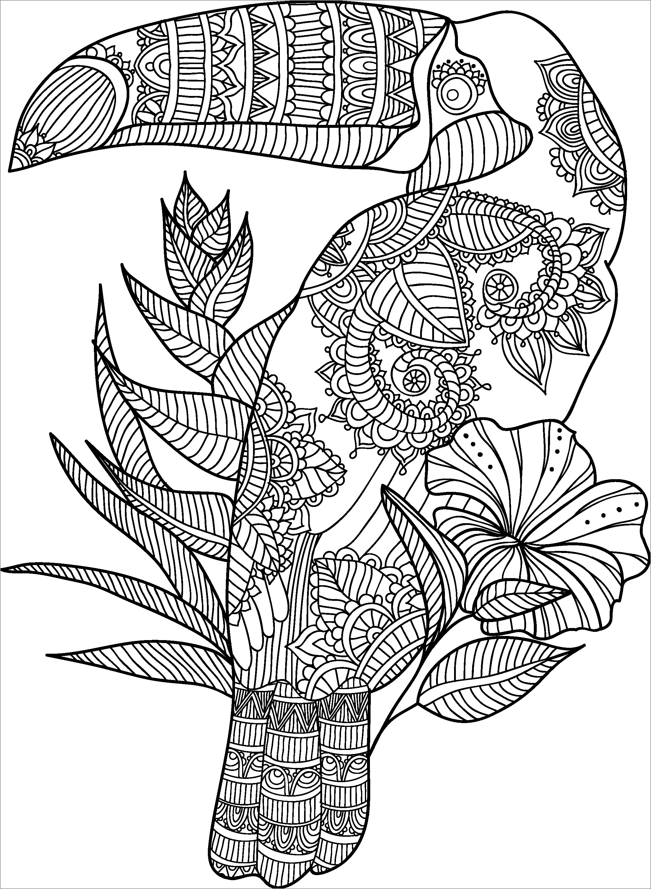 Zentangle Mandala toucan Coloring Page for Adult